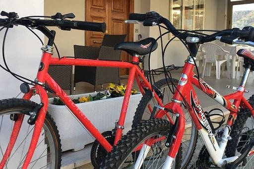 Disponibilità Biciclette